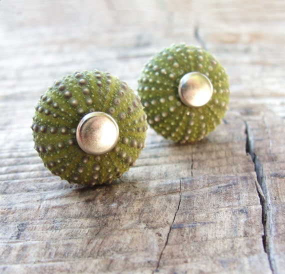 Sea Urchin Collection - Cool Green Cufflinks