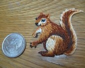 Red fox squirrel 2 Iron patch