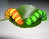 Green Inchy Worm