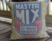 Vintage Feedsack Pillow - Master Mix - Fort Wayne - Yellow - Blue - Red - 20 Inch