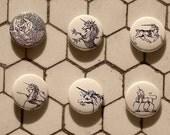 Unicorn  Buttons Badges