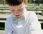 Bowtie for Little Boys Grey Graphic Blossom