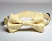 Boys Bowtie in Yellow Pinstripes