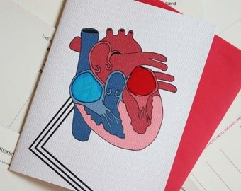 Ventricles Love