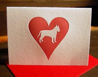 Heart: Pit Bull, single letterpress card