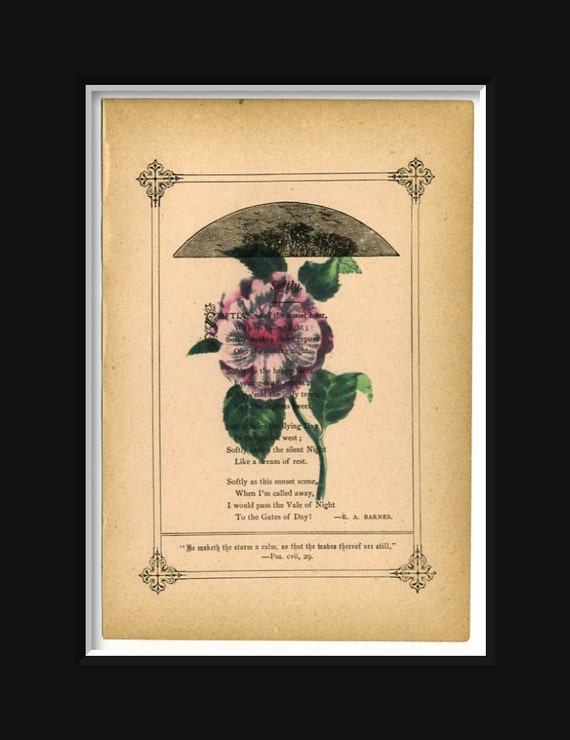 Rose Print on Antique Book Page