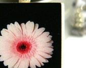 Floating Pink Gerbera Flower Daisy... Scrabble Tile Paper Pendant with Ball Chain Necklace and Storage Tin