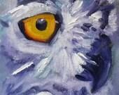 Original Owl Oil Painting on Canvas, Bird Portrait, Small 5x7 Wildlife Painting, Animal Art, Wall Decor