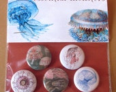 jellyfish 001 pin set of five