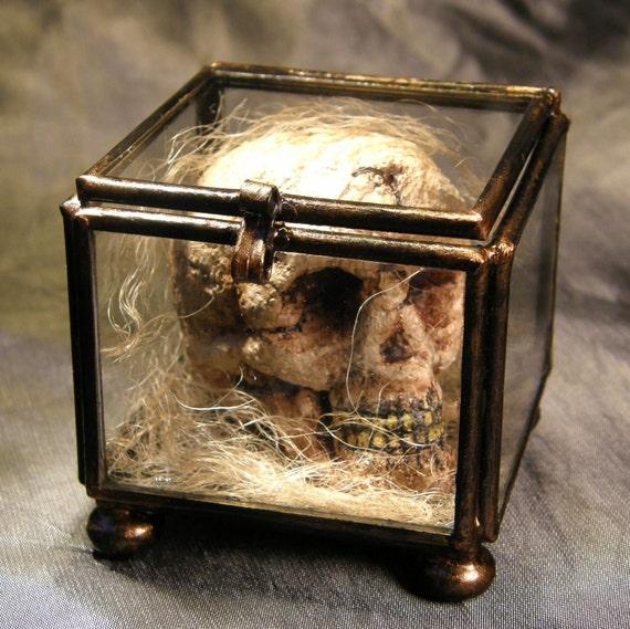 Skull Box Curio