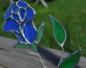 blue rosesuncatcher long stem