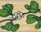 Mistletoegreenery rubber stamp