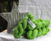 Aster Worsted Sweet Pea