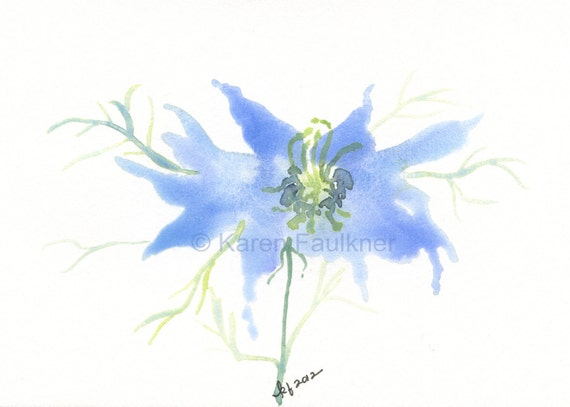 Love-in-the-mist original flower watercolor painting 6x4 inches