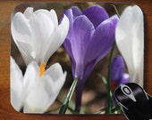 Purple and White Crocus -- Decorative Mouse Pad Mousepad for Home or Office