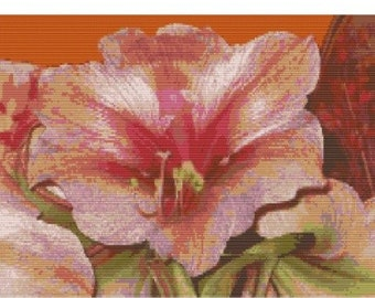 Amaryllis, Framed piece ready to hang