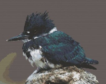 Belted Kingfisher, pattern for loom or peyote