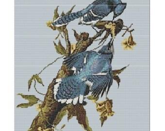 Blue Jays, bead pattern loom or peyote