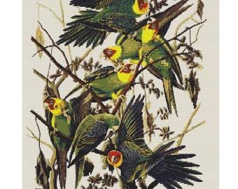 Carolina Parrots, pattern for loom or peyote