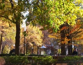 Rittenhouse Square Park with Beautiful Trees Leaves Colors Pavilion Foliage Philadelphia Photograph