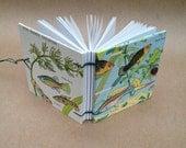 Handbound Book Mini-Book, Tiny Diary, Small Notebook  - Tropical Fish