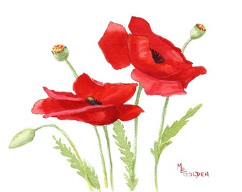 Small Poppies 1