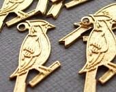 birdieeeeeees golden birdies