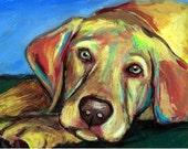 Labrador Retriever Art Print, Yellow Lab Pup, Bright, Dog Art by Dracos, lab puppy
