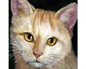 Tabby Cat Animal Art Print of Original Painting by Dottie Dracos, Light Yellow Tabby Kitty Face