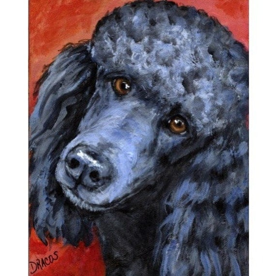 Poodle Dog Art Print of Original Painting by Dottie Dracos, Black Poodle on Red