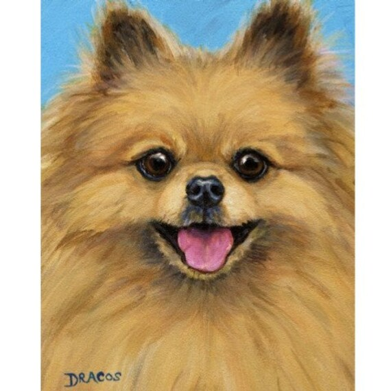 Pomeranian on Blue Dog Print of Original Painting by Dottie Dracos