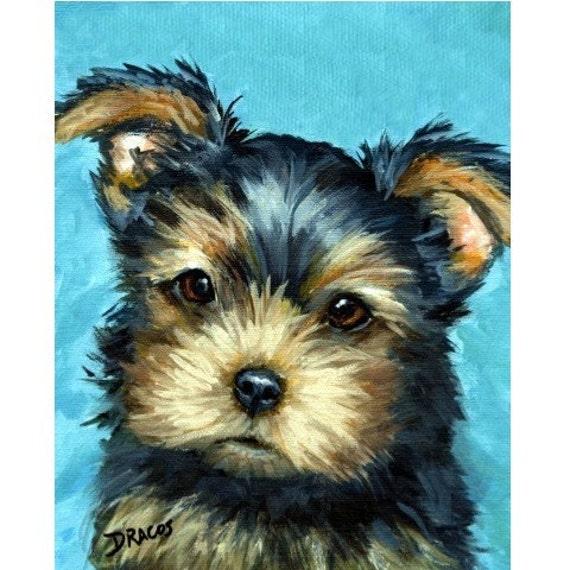 Yorkie Puppy Yorkshire Terrier On Blue Dog Art 8x10 Print Of