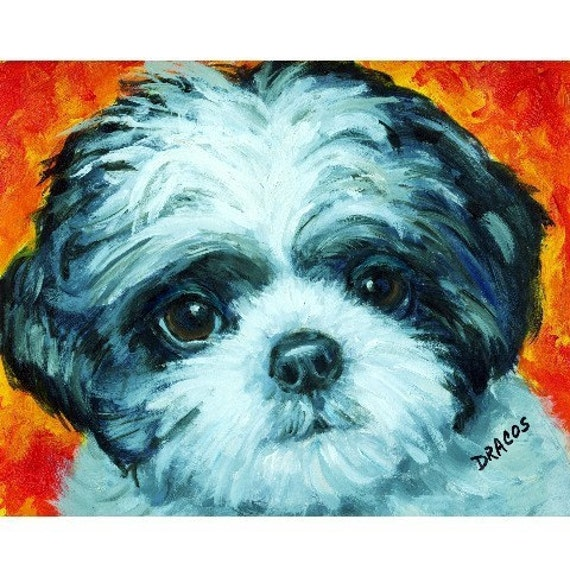 Shih Tzu Black and White Pup Dog Art Print of Original