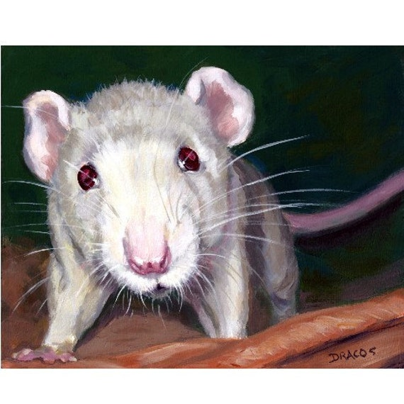 "Rat Animal Art Original Painting by Dottie Dracos, ""Young White Rat, Adorable"""