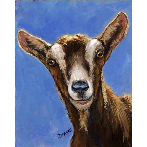 Goat Farm Animal Art 8x10 Original Painting By Dottie Dracos