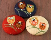 What a Hoot - Set of Three Owl Magnets