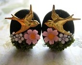 Pink Flowers Garden Earrings Posts Nature Natural Beauty Pink Flowers Swallow Birds Happiness