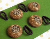 Tiny Turtle Ponytail Holders for Big and Little Kids