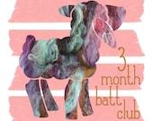 3 month fiber batt club - carded batts for spinning or felting