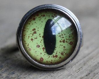 crocodile eyeball ring