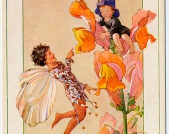 Vintage Unused Postcard The Snapdragon Fairies by Margaret Tarrant