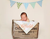 SALE Boy Themed Bunting.  Ready To Ship.  Photo Prop, Nursery Decoration, Party Banner, Shower Decor..