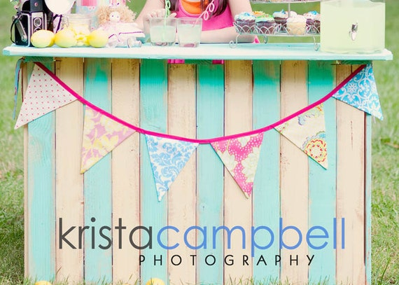 Shabby Chic Fabric Bunting Party Flags, Photo Prop, For a Child's Room or Photo Prop. Ready to Ship.