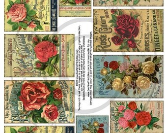 Instant Download - Printable Collage Sheet - Roses - U-Print - PDF or JPG file