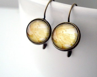 Clearance DISCONTINUED Simple Polaroid Photo Earrings - Onion Bloom - Antique Gold Bronze - Great for Bridesmaids, Mom, Weddings, Etc.