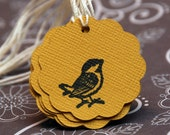 Bird Tags in Amber - Set of 6