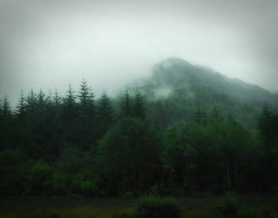Highland Mist - 8x10 Fine Art Photographic Print - Signed by Artist