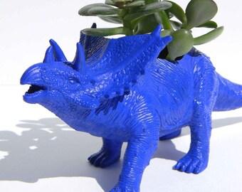 Dinosaur Planter Succulent Planter Triceratop Office Desk Decor