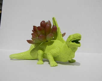 Jurassic Dinosaur Planter Great Dorm Office Home Decor Gift for Get Well  Boss' Teachers