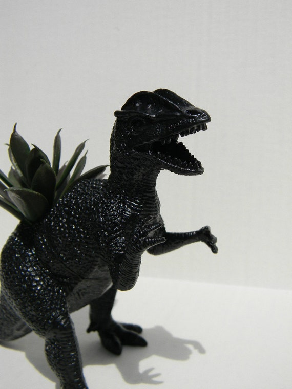 Dark Black Dinosaur Planter for Succulent Plants Minimalist Home Decor Theme